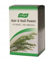 A.Vogel Hair & Nail -küünte ja juuste heaks  2x60tk