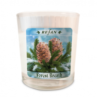 Sojavahast lõhnaküünal Forest Breath – klaasis